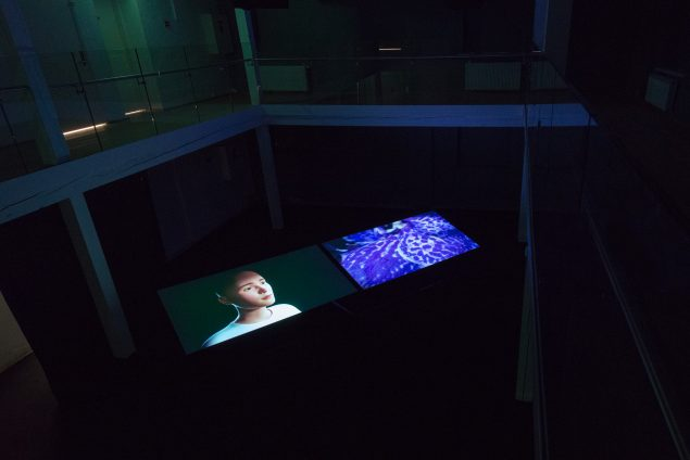 Ann Lislegaard: Pollen Messages, udstillingsview. Foto: Kurt Nielsen