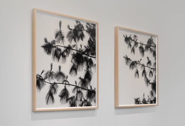 Installationsview fra Gl. Holtegaard. Foto: David Stjernholm.